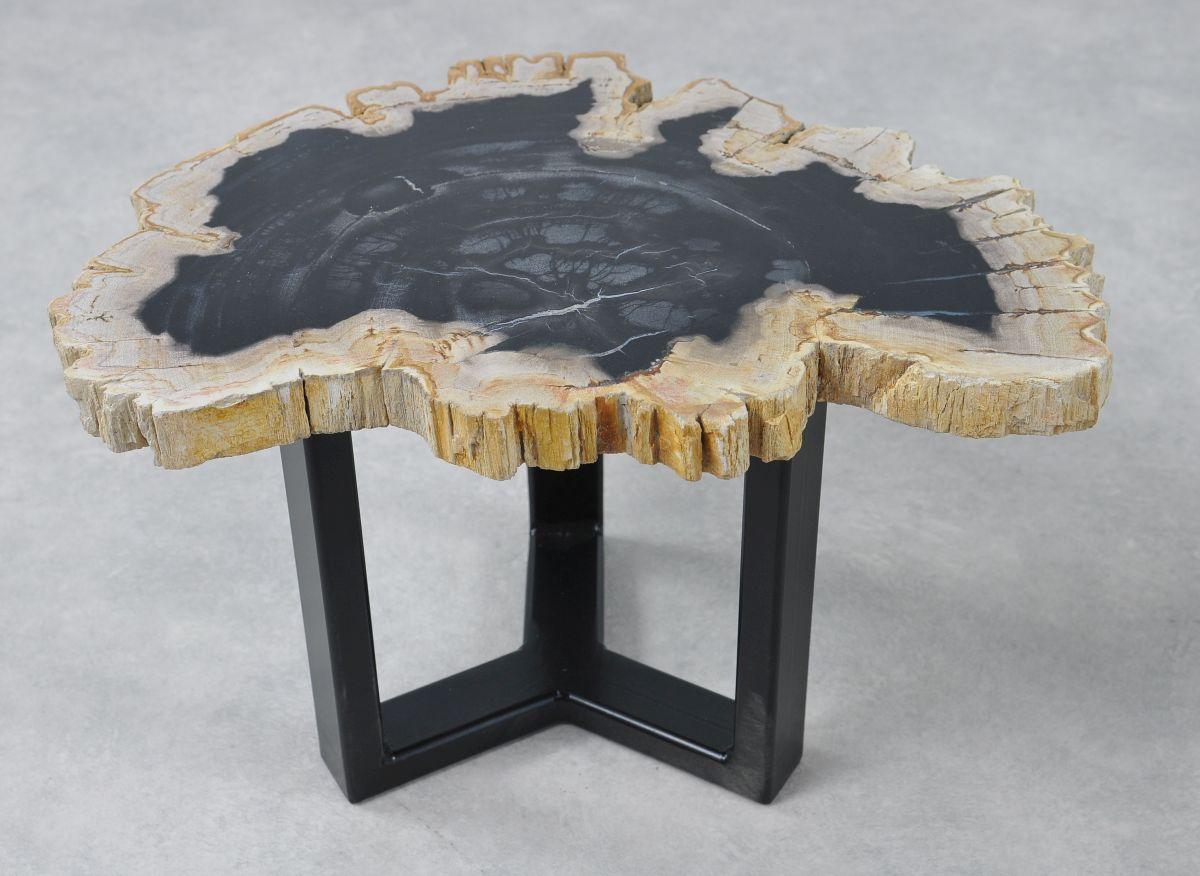 Couchtisch versteinertes Holz 36160