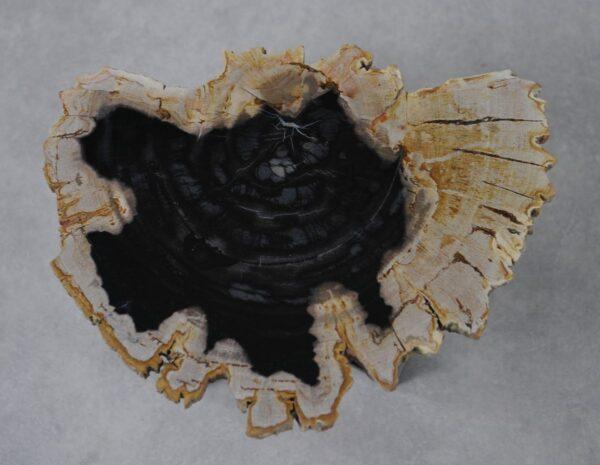 Couchtisch versteinertes Holz 36162