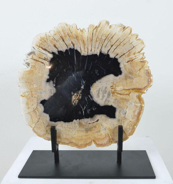Couchtisch versteinertes Holz 36165