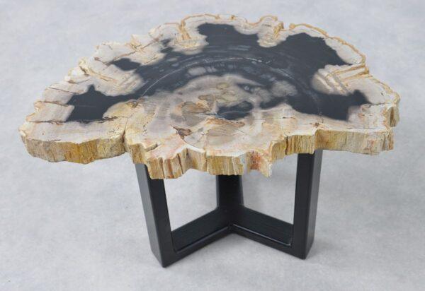 Couchtisch versteinertes Holz 36168