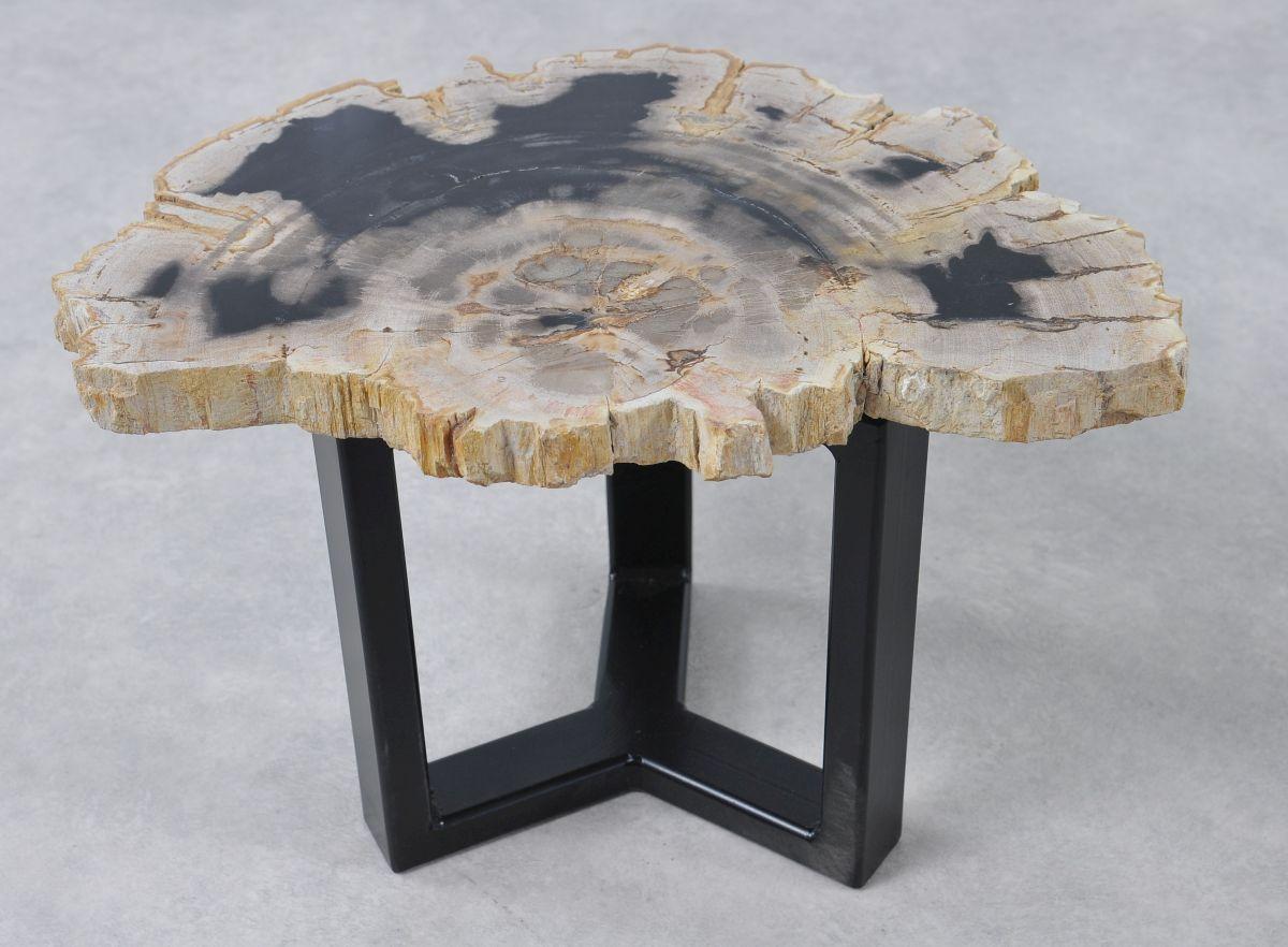 Couchtisch versteinertes Holz 36169