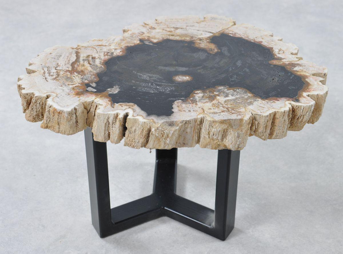 Couchtisch versteinertes Holz 36175