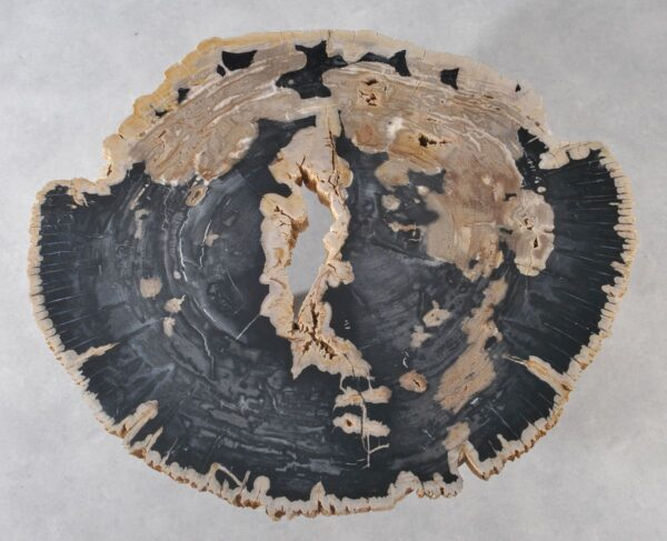 Couchtisch versteinertes Holz 36178