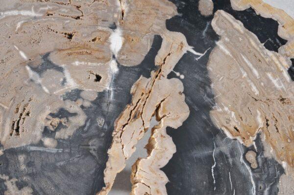 Couchtisch versteinertes Holz 36180
