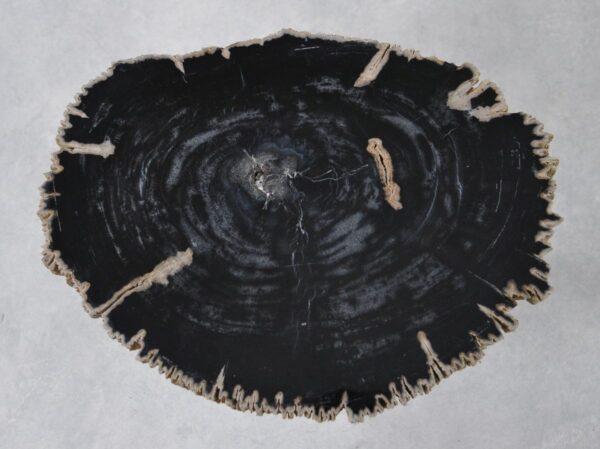 Couchtisch versteinertes Holz 36182