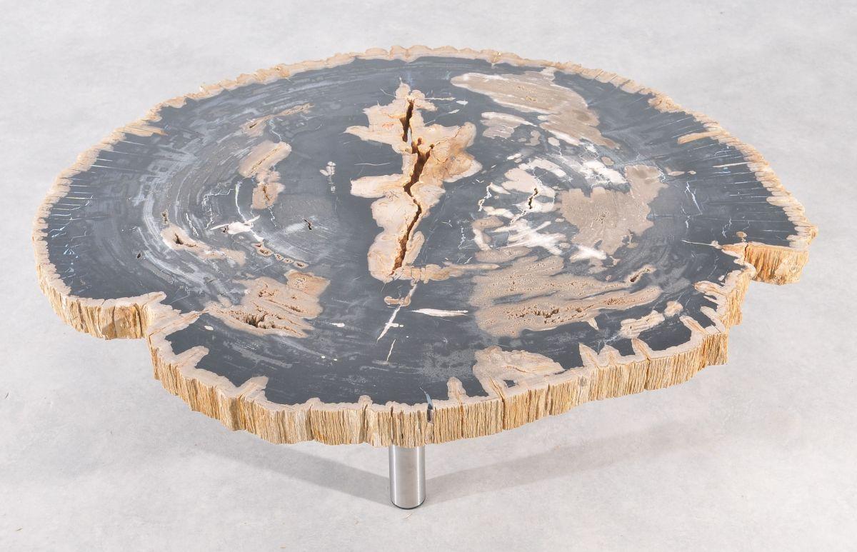 Couchtisch versteinertes Holz 36186