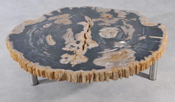 Couchtisch versteinertes Holz 36188