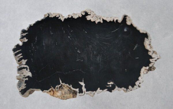 Couchtisch versteinertes Holz 36193