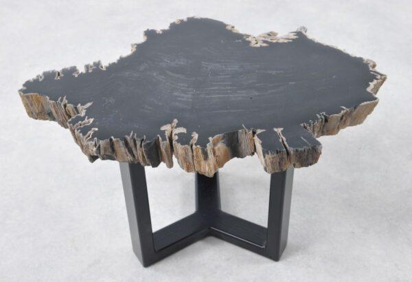 Couchtisch versteinertes Holz 36194
