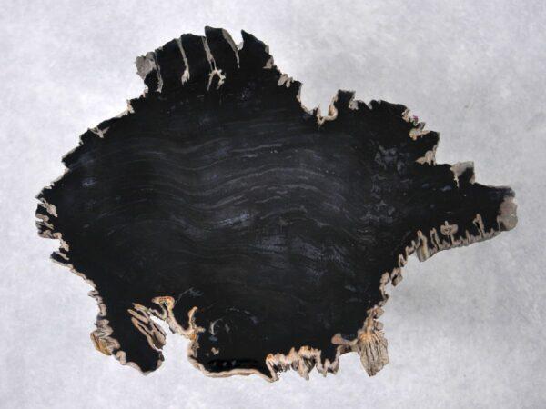Couchtisch versteinertes Holz 36195