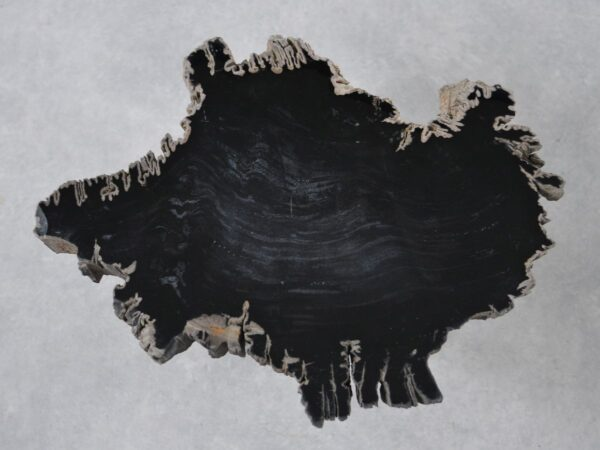 Couchtisch versteinertes Holz 36196