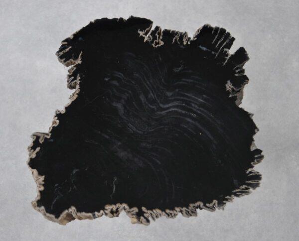 Couchtisch versteinertes Holz 36199