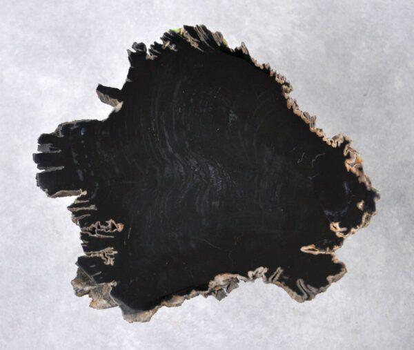 Couchtisch versteinertes Holz 36200