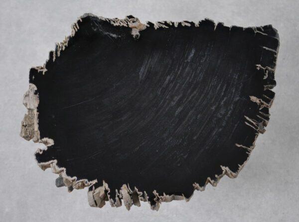 Couchtisch versteinertes Holz 36203