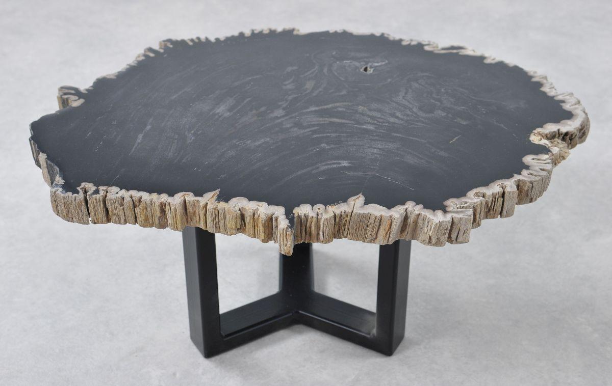 Couchtisch versteinertes Holz 36204