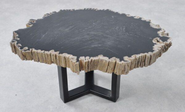 Couchtisch versteinertes Holz 36205