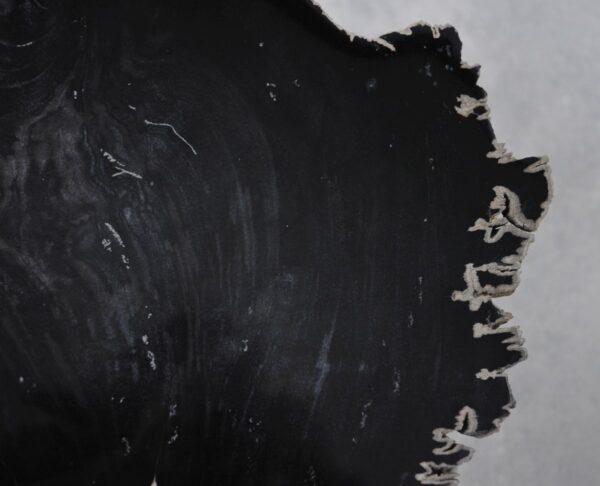 Couchtisch versteinertes Holz 36208