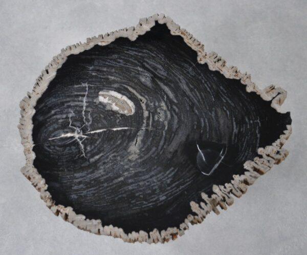 Couchtisch versteinertes Holz 36213