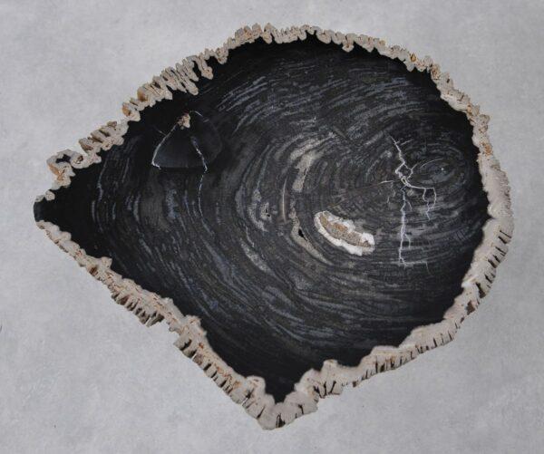 Couchtisch versteinertes Holz 36214