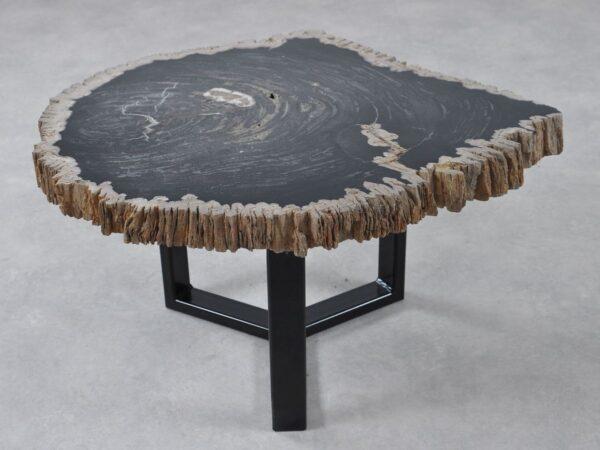 Couchtisch versteinertes Holz 36215