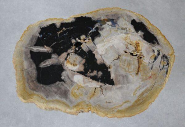 Couchtisch versteinertes Holz 36219