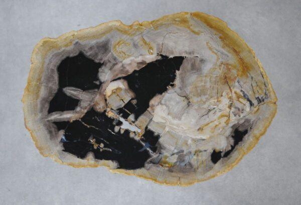 Couchtisch versteinertes Holz 36220