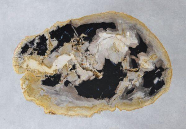 Couchtisch versteinertes Holz 36222