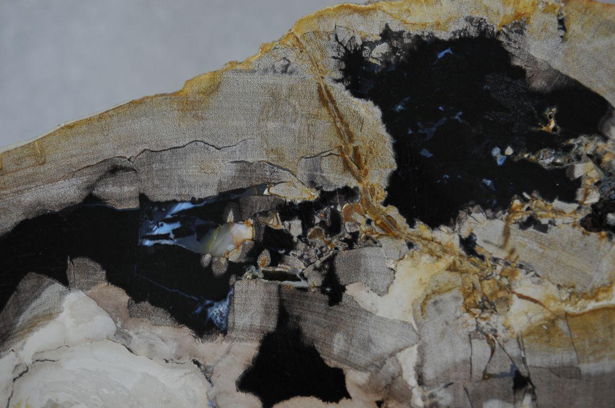 Couchtisch versteinertes Holz 36224