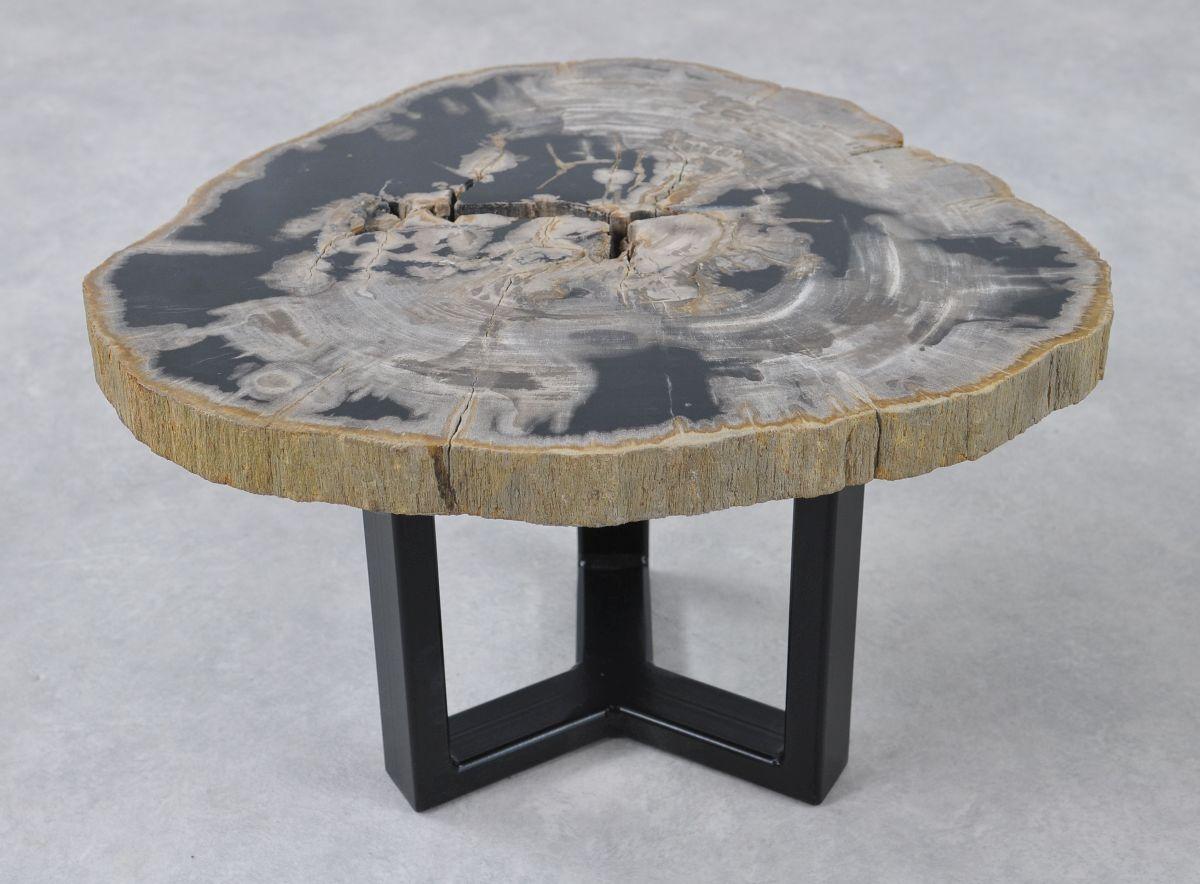 Couchtisch versteinertes Holz 36228