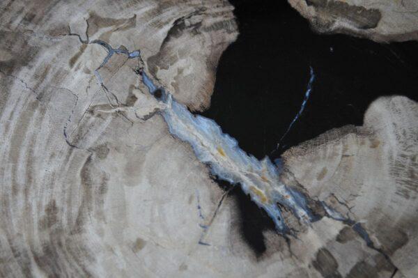 Couchtisch versteinertes Holz 36232