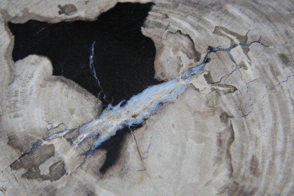 Couchtisch versteinertes Holz 36234