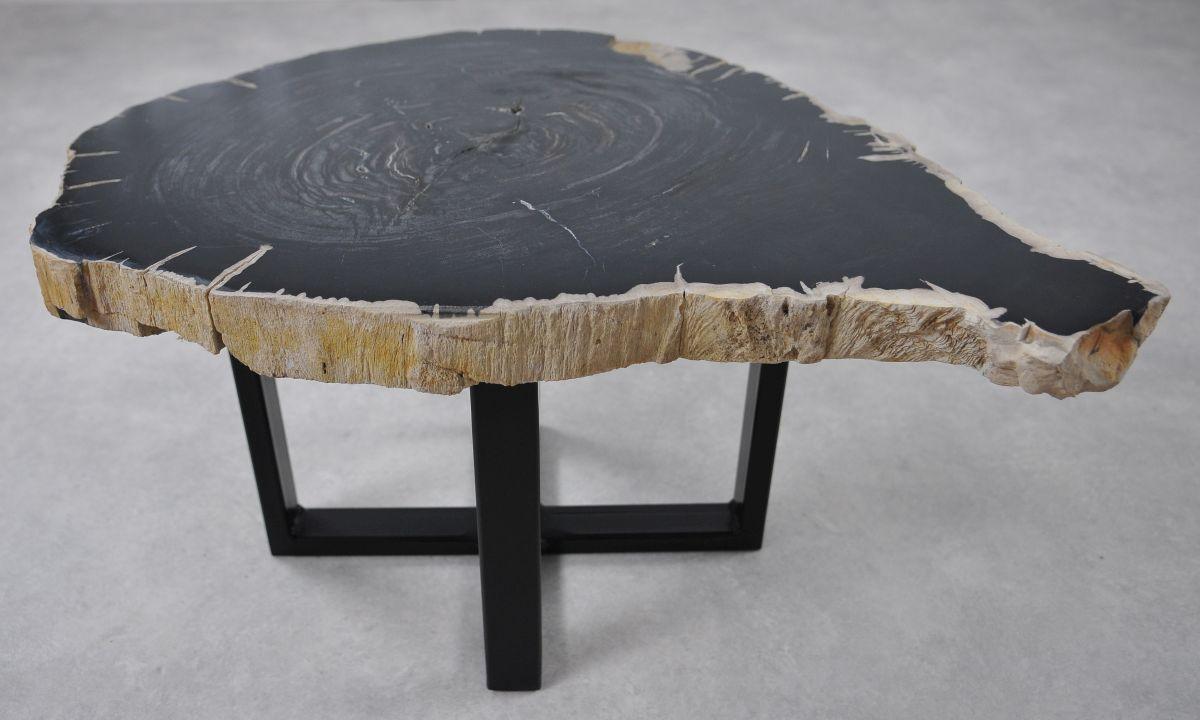 Couchtisch versteinertes Holz 36239