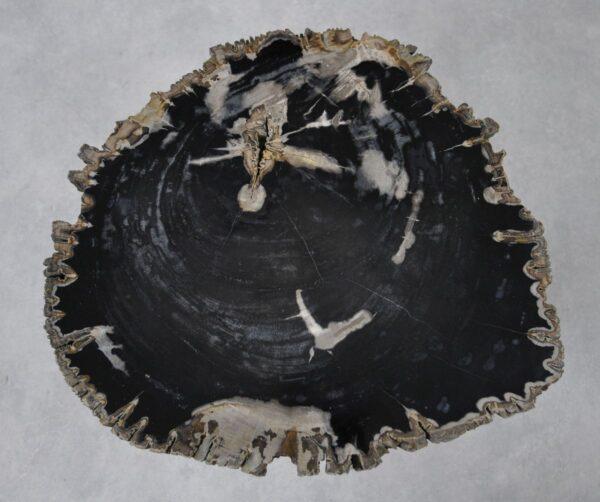 Couchtisch versteinertes Holz 36241