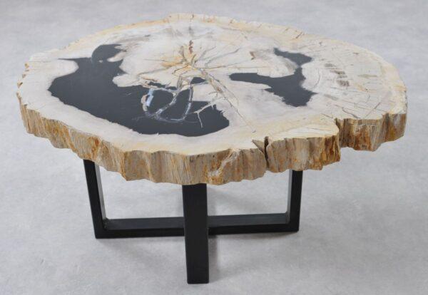 Couchtisch versteinertes Holz 36264
