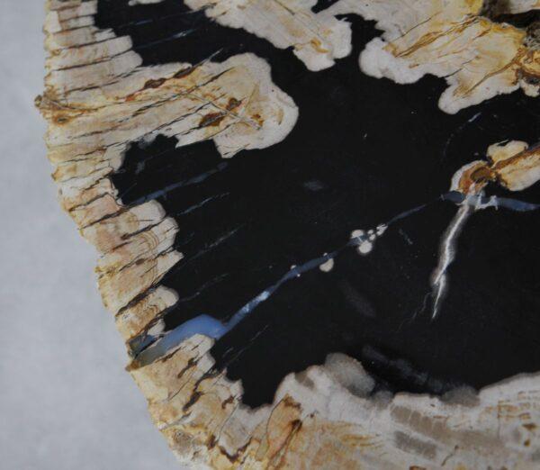 Couchtisch versteinertes Holz 36265