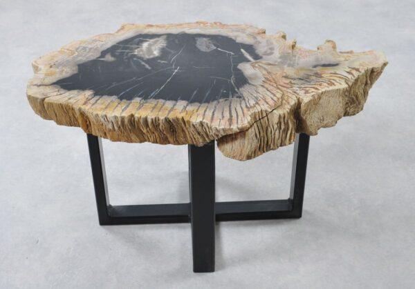 Couchtisch versteinertes Holz 36266