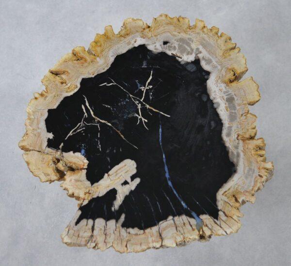 Couchtisch versteinertes Holz 36267