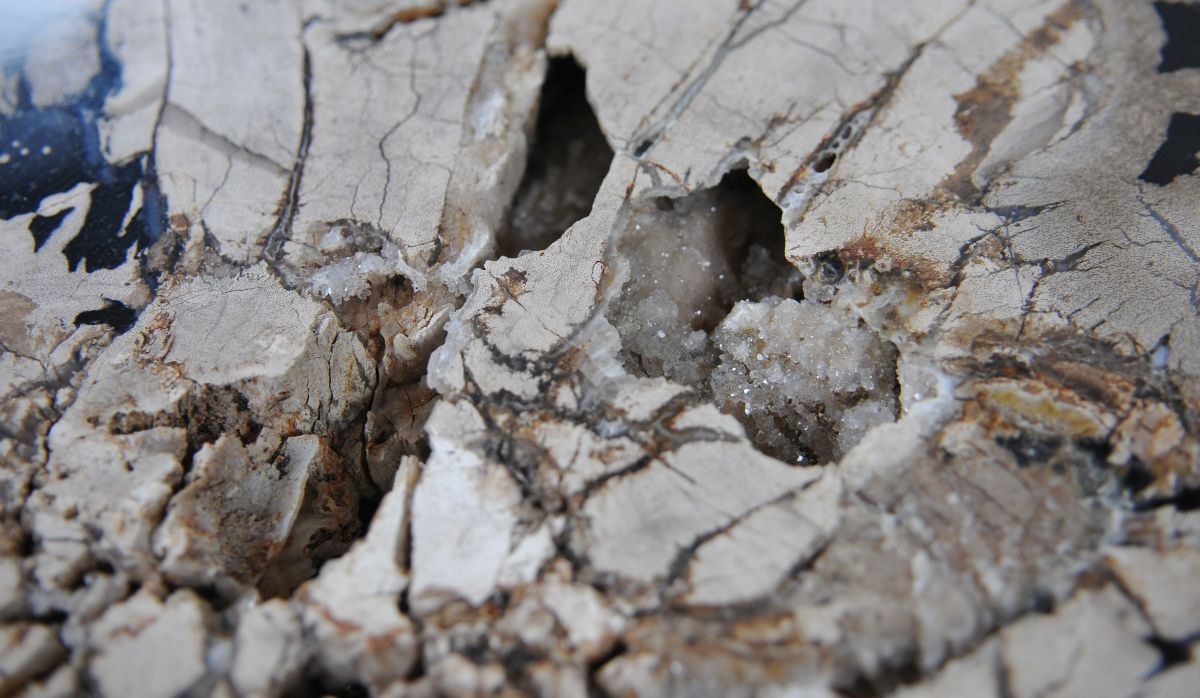 Couchtisch versteinertes Holz 36289
