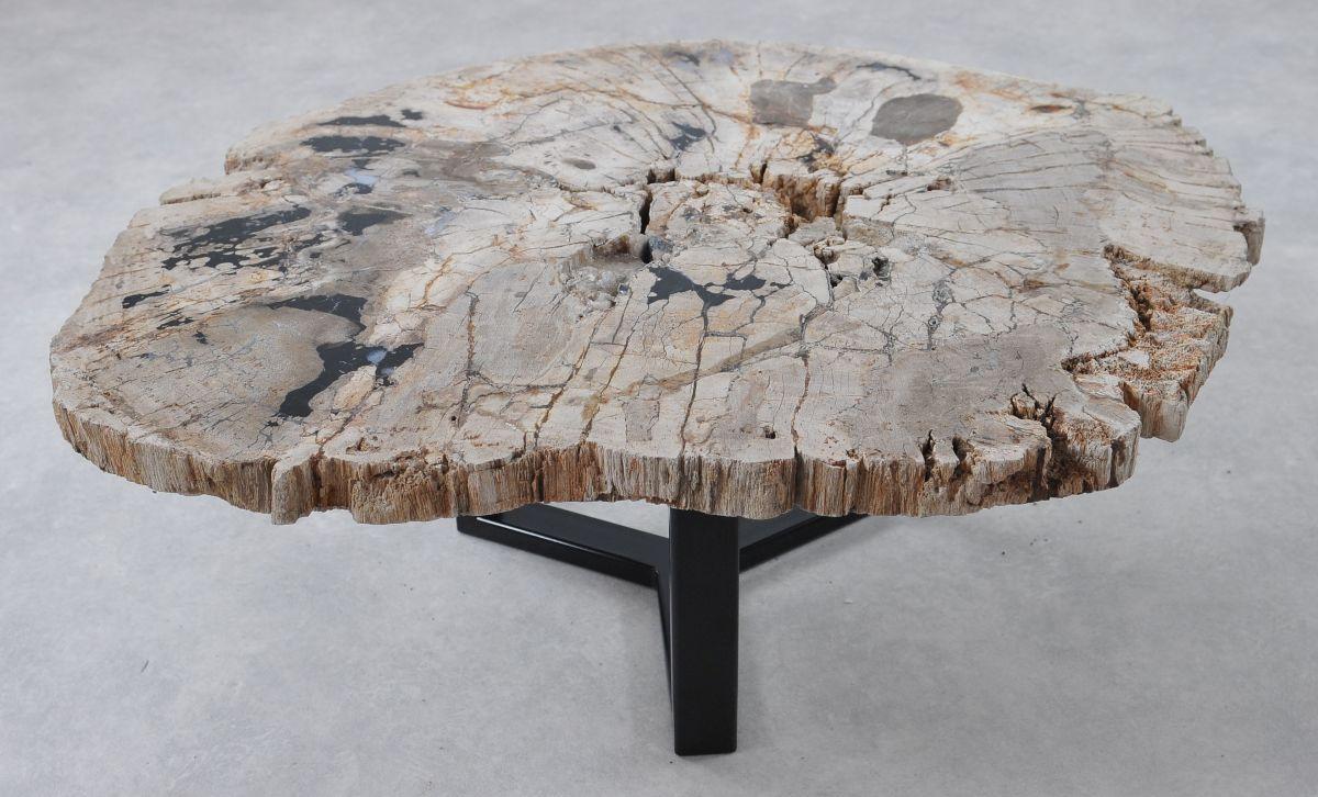 Couchtisch versteinertes Holz 36291