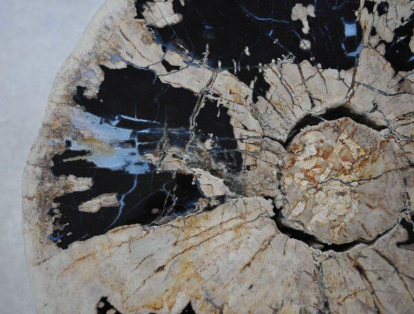 Couchtisch versteinertes Holz 36293