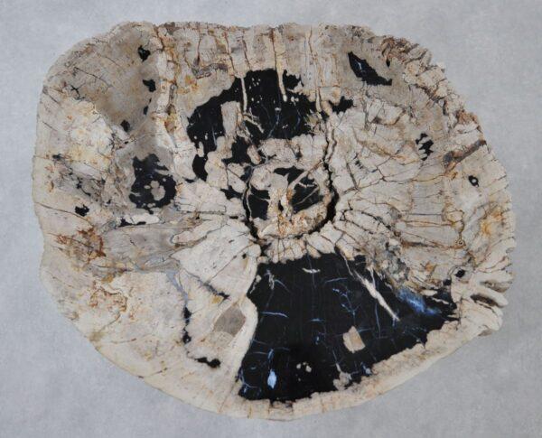 Couchtisch versteinertes Holz 36297