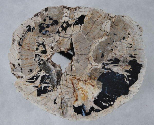 Couchtisch versteinertes Holz 36298
