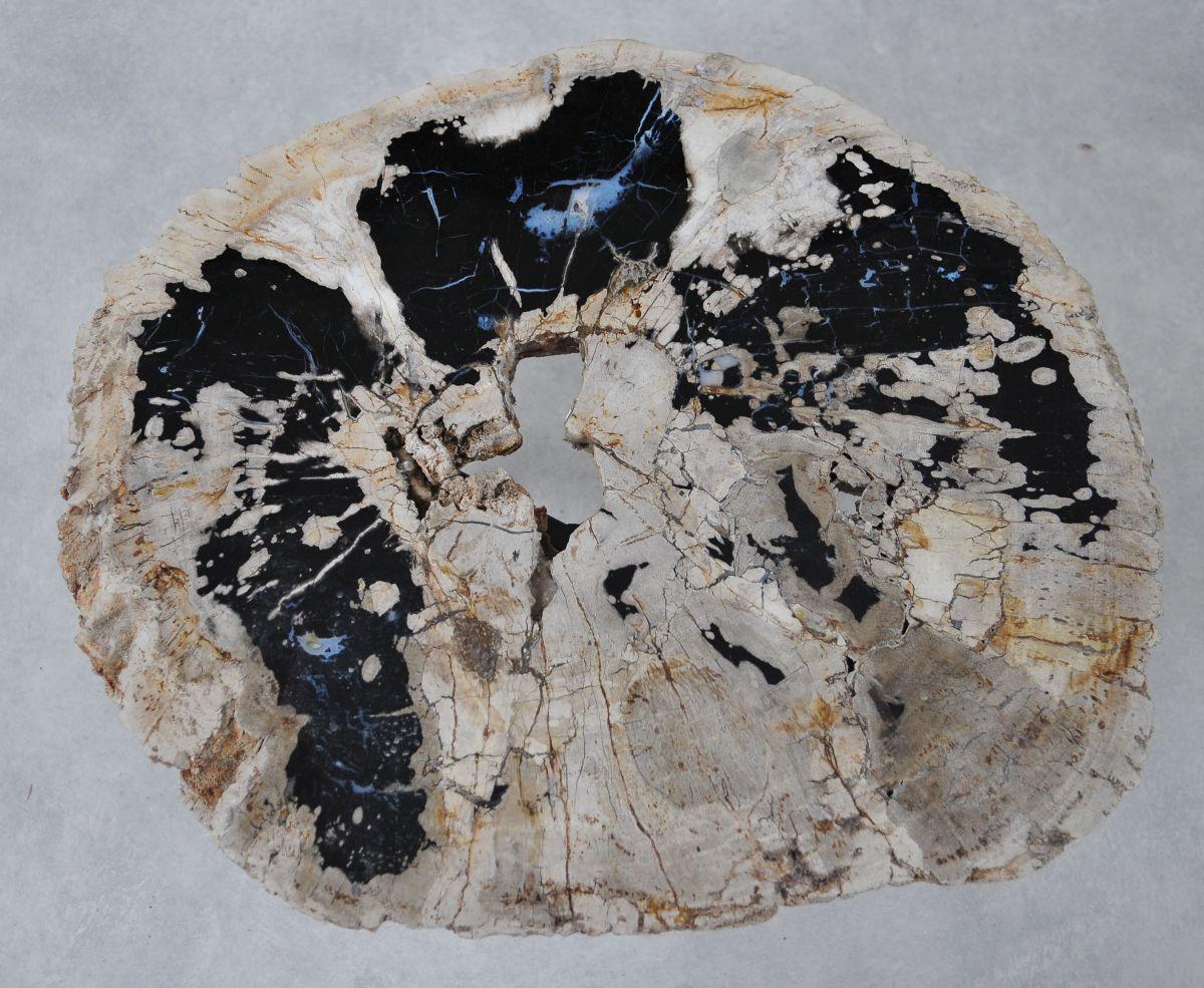 Couchtisch versteinertes Holz 36300
