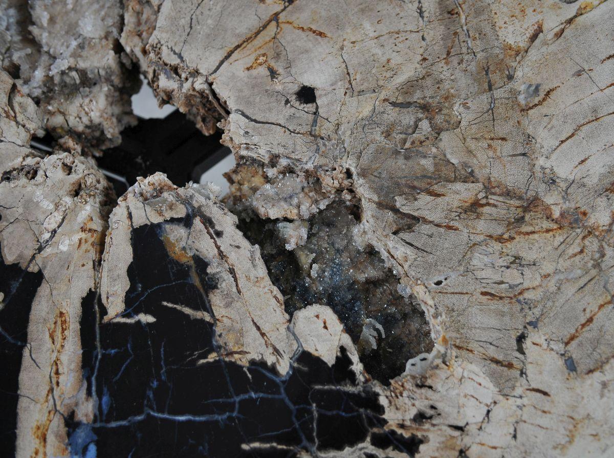 Couchtisch versteinertes Holz 36302