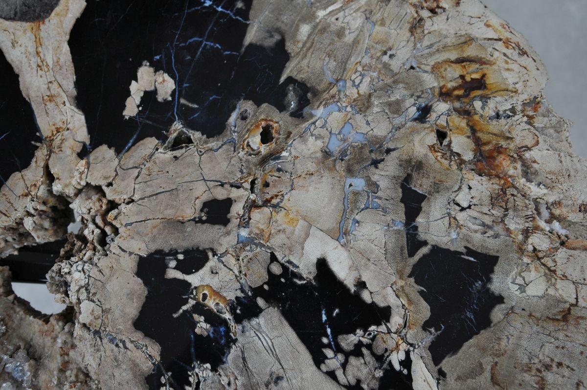 Couchtisch versteinertes Holz 36305