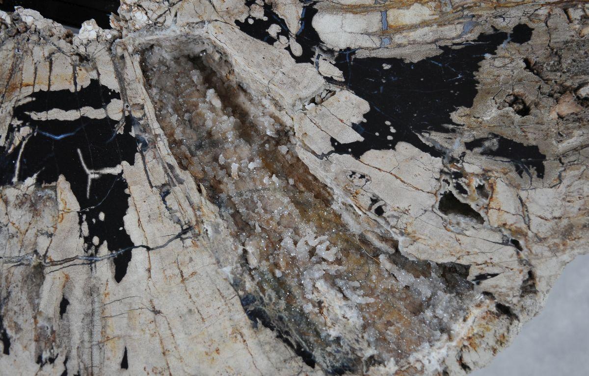 Couchtisch versteinertes Holz 36308