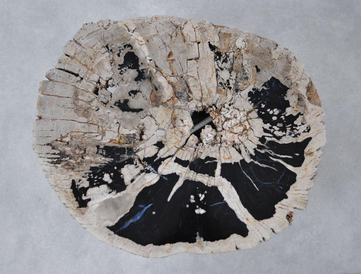 Couchtisch versteinertes Holz 36310