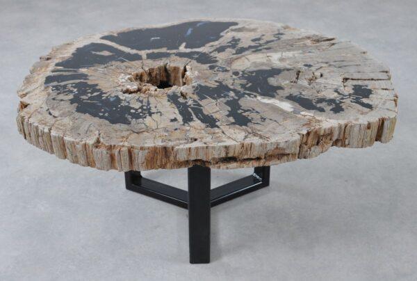 Couchtisch versteinertes Holz 36312