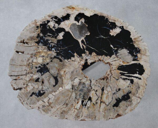 Couchtisch versteinertes Holz 36313