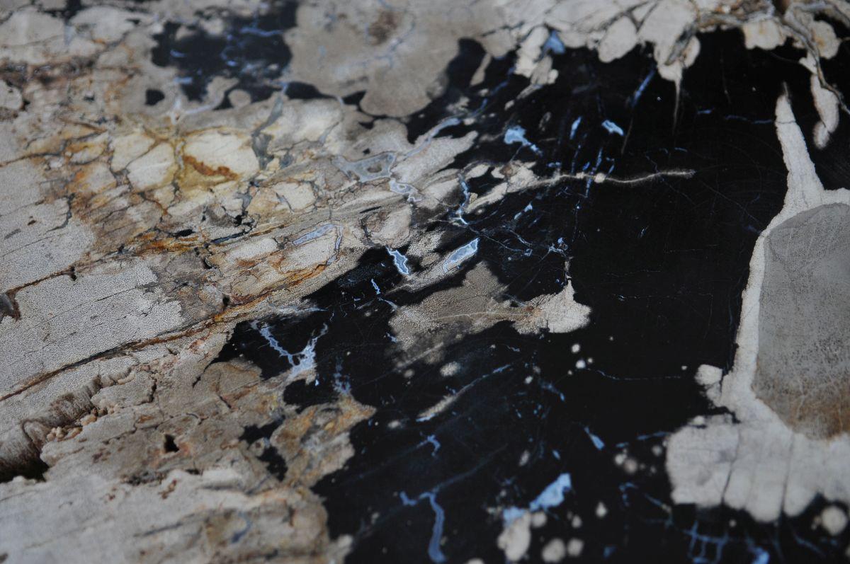 Couchtisch versteinertes Holz 36314